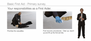 basic first aid - primary survey