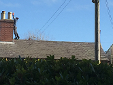 health-and-safety-stood-on-roof-without-harness